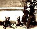 cane-corso-storia