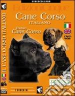 cane corso dvd